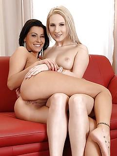 Lesbians Humping Porn